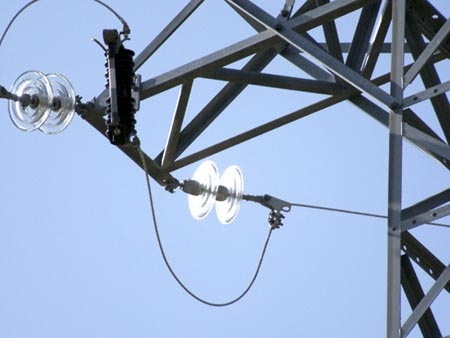 AVAS a reprogramat semnarea contractului de privatizare a Electrica Muntenia Sud