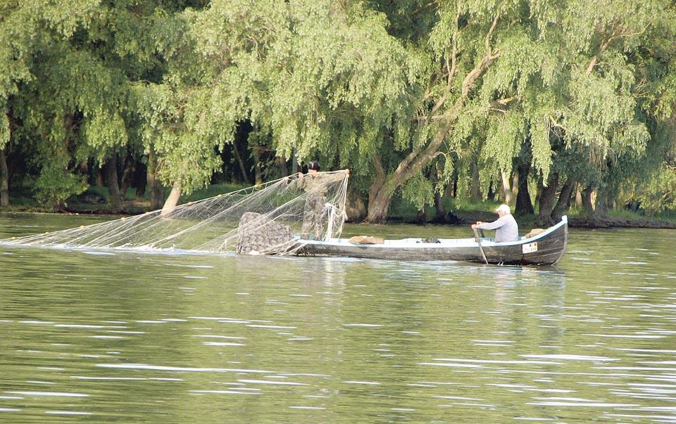 Fondurile europene pentru piscicultură, din blocaj în blocaj