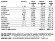 Profitul portofoliului virtual capital in 2008 – -29.848,96 (-49,57%)