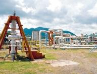 Călburean: Energia electrică «verde» mai poate aştepta