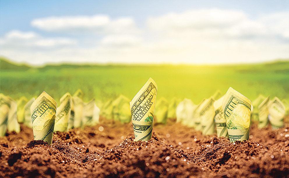 Ministrul Agriculturii: În luna iunie vom putea lansa toate măsurile de finanţare din noul PNDR