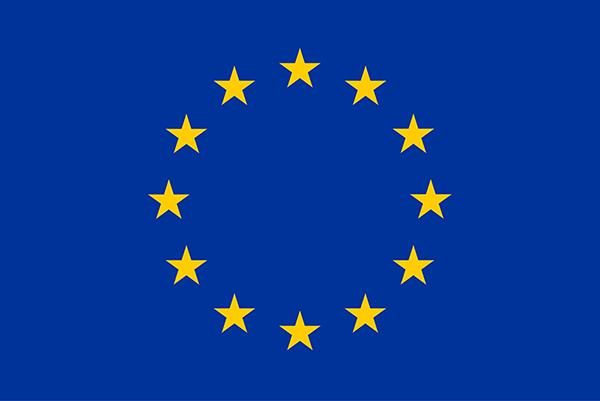 Țara în care sunt peste un milion de români a blocat Europa! Este singura țară care a făcut asta