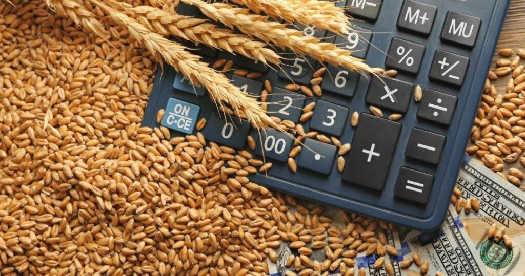 România exportă zeci de mii de tone de grâu în Iordania. Producția de grâu a scăzut aproape cu jumătate în 2020