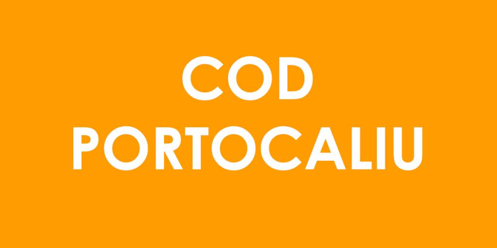 România, lovită de furtună! S-a anunțat Cod portocaliu în acest zone. Prognoza ANM