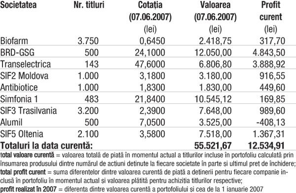 Profitul portofoliului virtual capital în 2007 4.952,82 lei (9,79%)