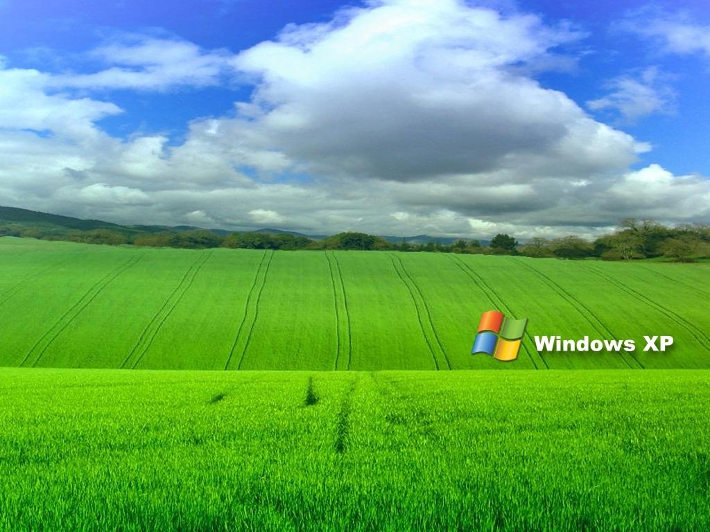 Milioane de utilizatori de PC renunţă la Windows XP