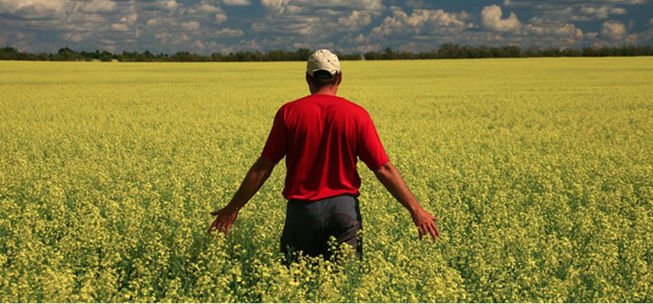 Excedent de 182 milioane de euro la comerţul cu produse agroalimentare