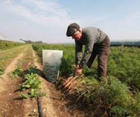 Veşti bune pentru fermieri! Iată cum pot lua credite mai avantajoase pentru investiţii