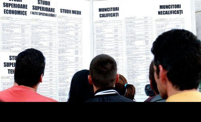 Legea care va rezolva șomajul! Condiția care trebuie îndeplinită