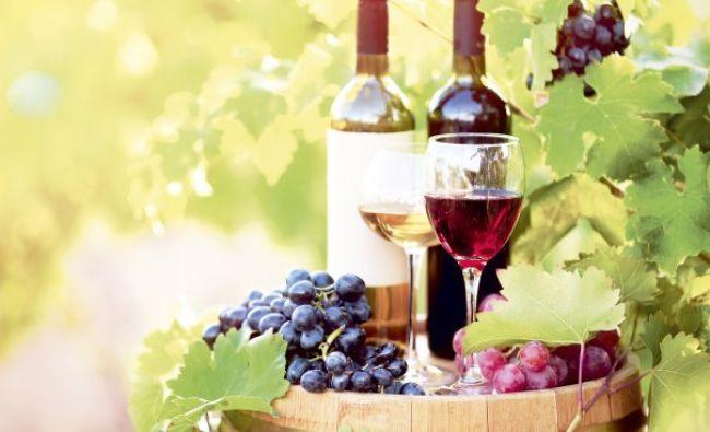 Exporturile de vin, în creştere cu 22% în primele nouă luni din 2016