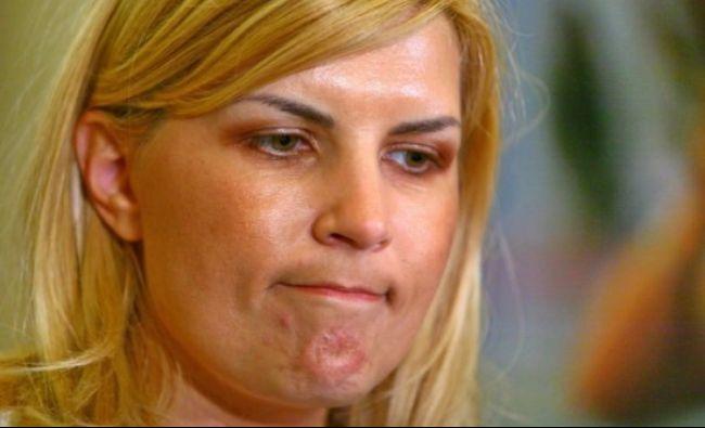 Elena Udrea, declarații incendiare. Cine se află în spatele lui Tudorel Toader