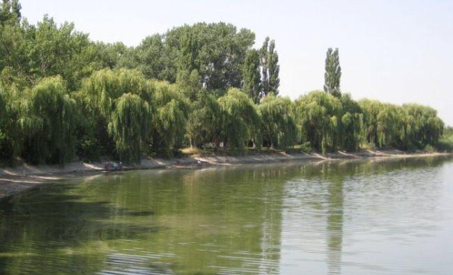 Alertă de poluare în zona Otopeni. Lacurile Capitalei au fost infectate. Sursa poluării, controversată!
