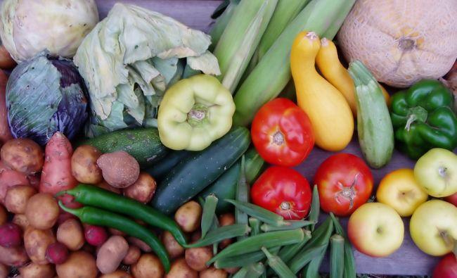 Salata minune care te slăbește dacă o consumi dimineața! Cele trei legume care trebuie combinate în acest fel!