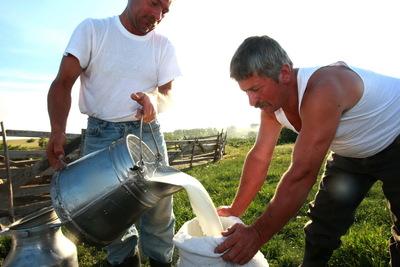 Producătorii pot depune cerere pentru cotele de lapte de la rezerva națională