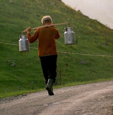 """SCANDALUL laptelui: """"Domnul Fuia a făcut o declaraţie care şi pe mine m-a şocat"""""""