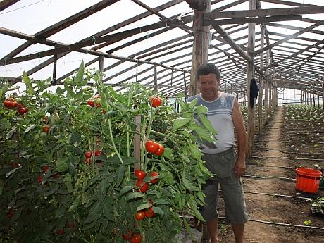 """Comuna din România unde hectarul costă 46.000 euro și unitatea de măsură a producției e """"lada de banane"""""""