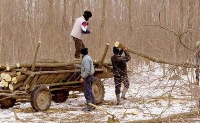 61% dintre tinerii români nu au lucrat niciodată. Mediul rural, sursa şomerilor